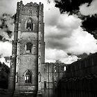 Fountains Abbey, Yorkshire by Neil Messenger