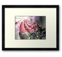 Carnation Abstract Framed Print