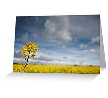 Rapeseed, Brassica napus Greeting Card