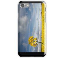 Rapeseed, Brassica napus iPhone Case/Skin