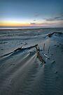 Wind-swept Evening - Florence, Oregon, USA by Sean Farrow