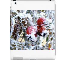 Frosty Berries iPad Case/Skin