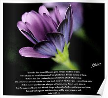 Seek His Kingdom Poster
