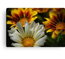 Floral Geometry Canvas Print