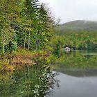 Lake Cottage In Spring by Joe Jennelle