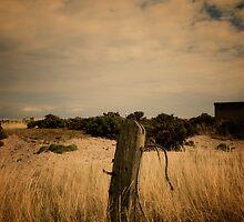 Derelict by Nigel Bangert