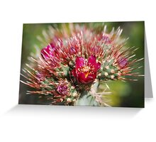 Damn The Pricks! Full Bloom Ahead! Greeting Card
