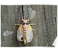 Bug2! Poster