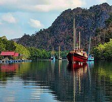 Langkawi Mangroves by Graham Taylor