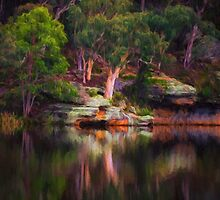 In a Reflective Mood - Dunnes Swamp NSW by Philip Johnson