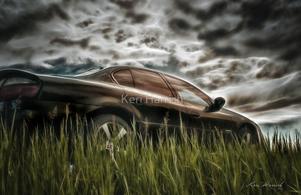 GXP by Keri Harrish