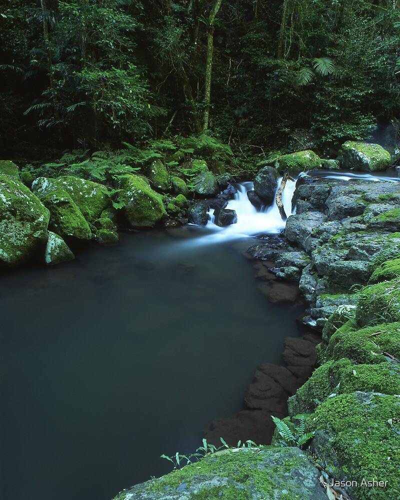 """Cunungra Creek"" ∞ Lamington National Park, QLD - Australia by Jason Asher"
