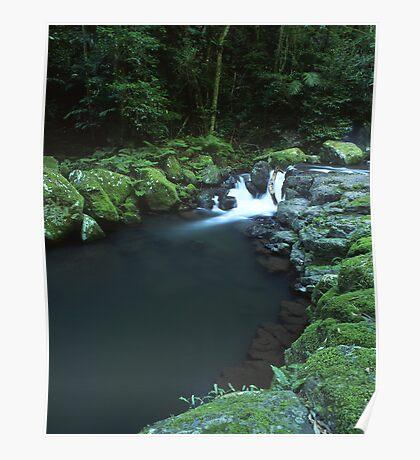 """Cunungra Creek"" ∞ Lamington National Park, QLD - Australia Poster"