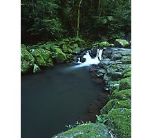 """Cunungra Creek"" ∞ Lamington National Park, QLD - Australia Photographic Print"