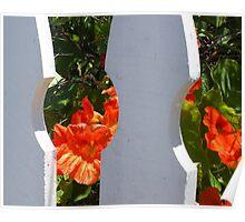 Picket Fence Peek Poster