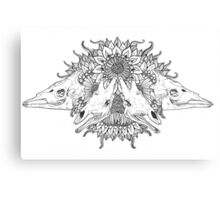 Giraffe skulls Canvas Print
