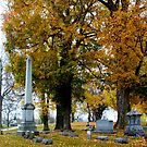 RAINY AUTUMN DAY IN THE CEMETERY by Pauline Evans