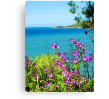 Purple Spray Above the Aegean Sea Canvas Print