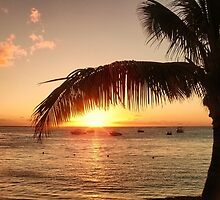 Mauritian Sunset by Blessedwalnut