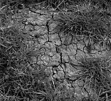 Drought by Teemu