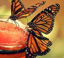 Monarchs by WDaRos714