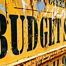 Budget Skips by Vikki-Rae Burns