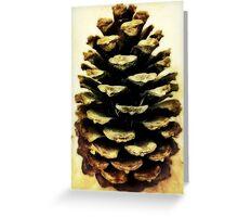 Giant Italian pine cone Greeting Card