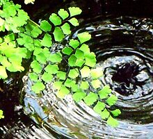 Plant and a Pond by CrystalFanning