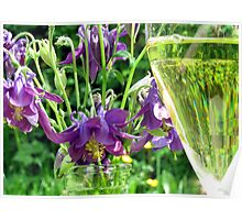 Summer, flowers and a glass of wine Poster