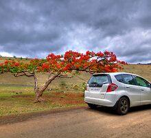 End of Summer by Prasad