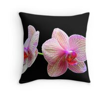 Orchids.....Longwood Gardens Throw Pillow