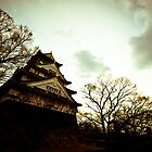 Osaka Castle by MikeBlake