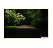 Dark lonely pathway with a beam of light. Art Print