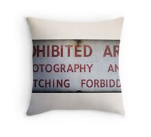 No Photography or Sketching  Throw Pillow