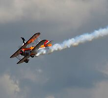 Orange aerial by zamix