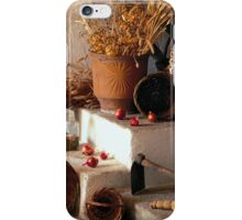 Cellar Stil Life iphone case iPhone Case/Skin
