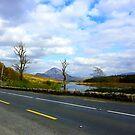 Leaving Mount Errigal by Fara