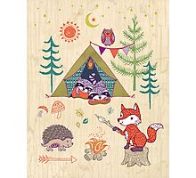 Racoons Campout Wood background Photographic Print
