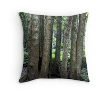 Mt. Tomah - Circle of Trees Throw Pillow