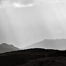 Perthshire Light by PigleT