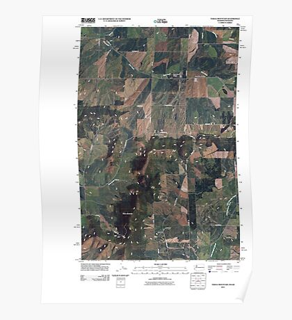 USGS Topo Map Washington State WA Tekoa Mountain 20110401 TM Poster
