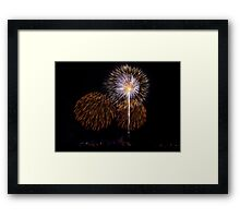 Fire Flowers pt3 Framed Print