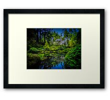 Enchanted Pool Framed Print