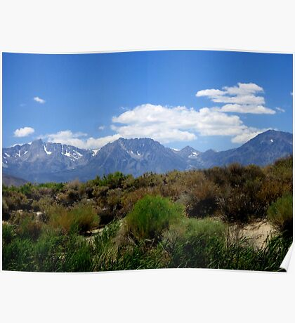 From Desert To Mountain Poster