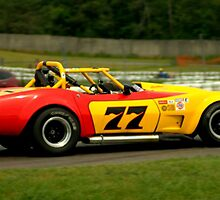 Mosport 2012.. No 2 in the series....... by Larry Llewellyn