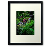 Flowing Water and Stone Lantern Framed Print