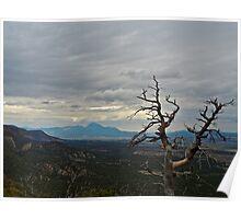 Gloom in Mesa Verde Poster
