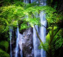 Enlightening Falls by LandLimages