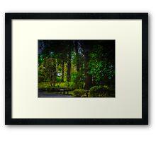 Forest At Rest Framed Print