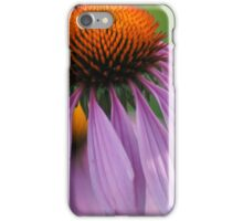 Purple Cornflower iPhone Case/Skin